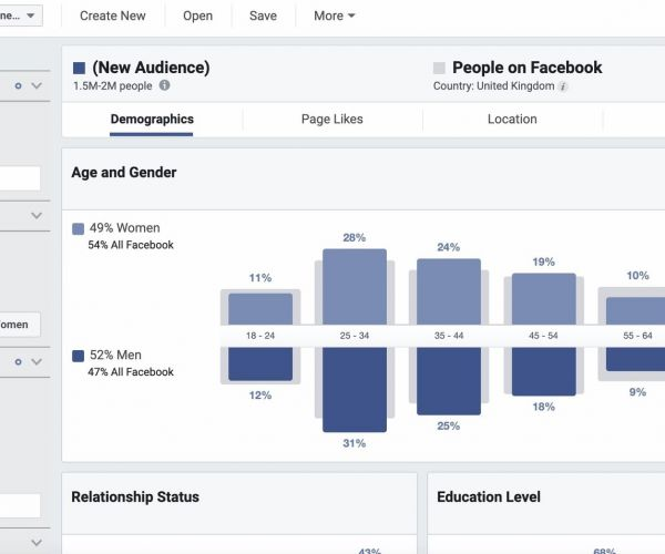 How to generate leads with Content Marketing-GLO-Facebook Audience Insights